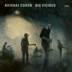 Big Vicious  Avishai Cohen