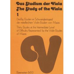 Das Studium der Viola